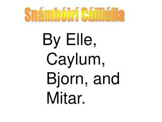 By Elle, Caylum, Bjorn, and Mitar.
