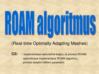 (Real-time Optimally Adapting Meshes)