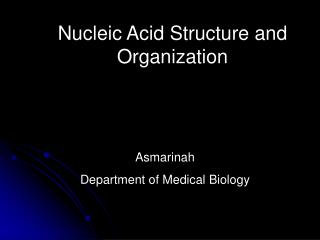 Nucleic Acid Structure and Organization