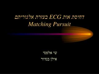 דחיסת אות  ECG  בעזרת אלגוריתם Matching Pursuit