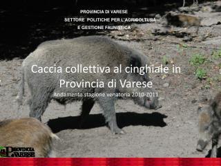 Caccia collettiva al cinghiale in Provincia di Varese Andamento stagione venatoria 2010-2011