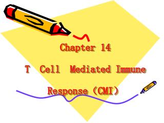 Chapter 14   T  Cell  Mediated Immune Response ? CMI ?