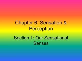 Chapter 6 Sensation  Perception