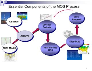 Essential Components of the MOS Process