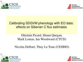 Calibrating SDGVM phenology with EO data: effects on Siberian C flux estimates