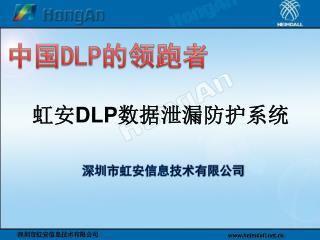 中国 DLP 的领跑者