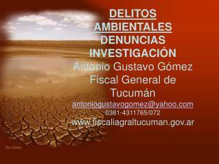 DELITOS AMBIENTALES DENUNCIAS INVESTIGACIÓN Antonio Gustavo Gómez Fiscal General de Tucumán