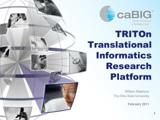 TRITOn Translational Informatics Research Platform