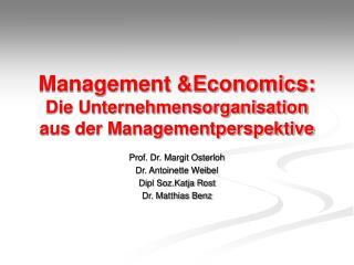 Management &Economics: Die Unternehmensorganisation aus der Managementperspektive