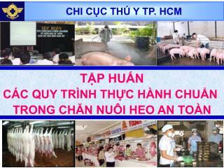 CHI CỤC THÚ Y TP. HCM