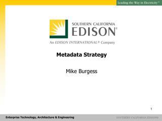 Metadata Strategy Mike Burgess