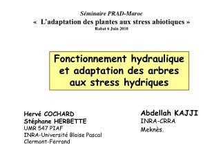 Séminaire PRAD-Maroc « L'adaptation des plantes aux stress abiotiques» Rabat 6 Juin 2010