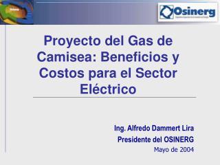 Proyecto del Gas de Camisea: Beneficios y Costos para el Sector Eléctrico