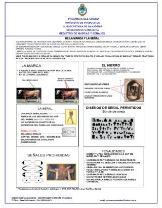 PROVINCIA DEL CHACO  MINISTERIO DE PRODUCCION SUBSECRETARIA DE GANADERIA