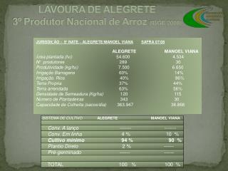 LAVOURA DE ALEGRETE 3º Produtor Nacional de Arroz  (IBGE 2008)