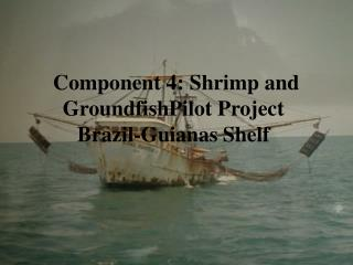 Component 4: Shrimp and GroundfishPilot Project  Brazil-Guianas Shelf