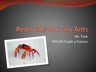 Red Crabs & Crazy Ants