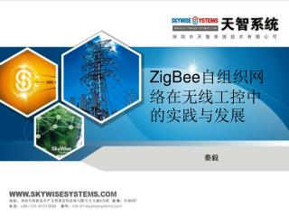 ZigBee 自组织网络在无线工控中的实践与发展