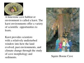 Squire Boone Cave
