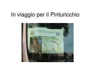 In viaggio per il Pinturicchio