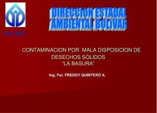 """CONTAMINACION POR  MALA DISPOSICION DE DESECHOS SÓLIDOS """"LA BASURA"""""""