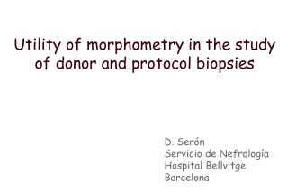Utility of morphometry in the study of donor and protocol biopsies
