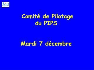 Comité de Pilotage du PIPS Mardi 7 décembre