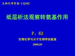 生物化学实验   CQMU