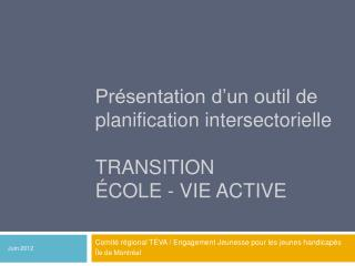 Pr�sentation d�un outil de planification intersectorielle Transition  �cole - vie active