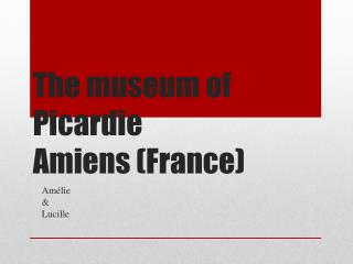 The museum of Picardie Amiens (France)