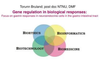 Torunn Bruland; post doc NTNU, DMF