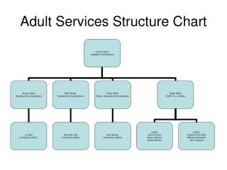Adult Services Structure Chart