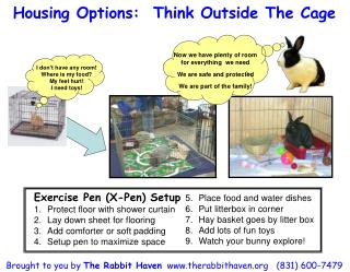 Housing Options:  Think Outside The Cage
