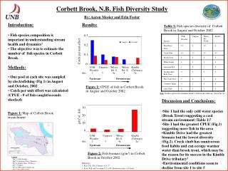 Corbett Brook, N.B. Fish Diversity Study By: Aaron Mosier and Erin Foster