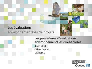 Les évaluations environnementales de projets