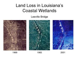 Land Loss in Louisiana's Coastal Wetlands