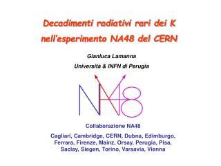 Decadimenti radiativi rari dei K  nell'esperimento NA48 del CERN