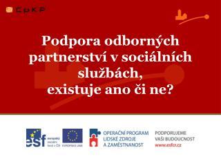 Podpora odborných partnerství v sociálních službách,  existuje ano či ne?