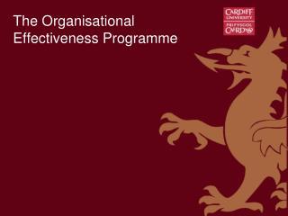 The Organisational Effectiveness Programme