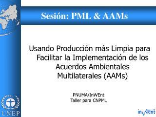 Sesi�n: PML & AAMs