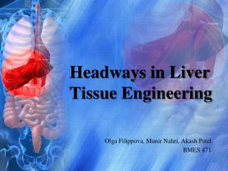 Headways in Liver Tissue Engineering