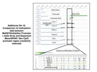 Sequenom Methylation Analysis