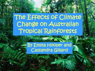 The Effects of Climate Change on Australian Tropical Rainforests