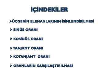 İÇİNDEKİLER