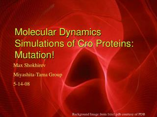 Molecular Dynamics Simulations of Cro Proteins: Mutation