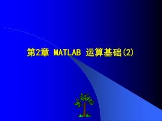 第 2 章  MATLAB  运算基础 (2)