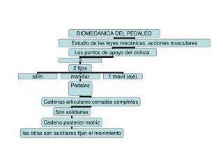 MEDIDAS DE APOYO CICLISMO