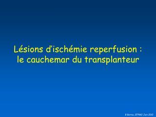 Lésions d'ischémie reperfusion :  le cauchemar du transplanteur
