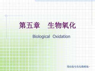 第五章  生物氧化