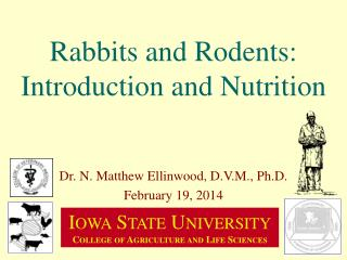 Rabbits and Rodents: Introduction and Nutrition